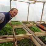 Participez au développement de l'Aloe Véra Bio du Pays Bigouden !