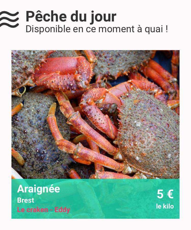 MonPecheur.com : La vente directe côté mer !