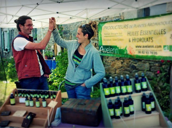 Des huiles essentielles produites en Bretagne : Avelenn