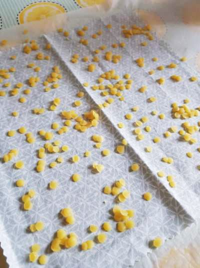 Comment fabriquer des bee wrap maison ? La méthode DIY