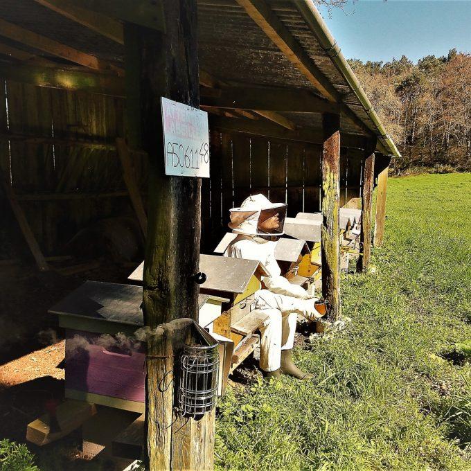 Les Jolis Petits Ruchers - le repos de l'apiculteur
