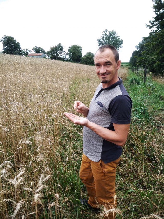 Atelier des Pains - contrôle de maturité du grain