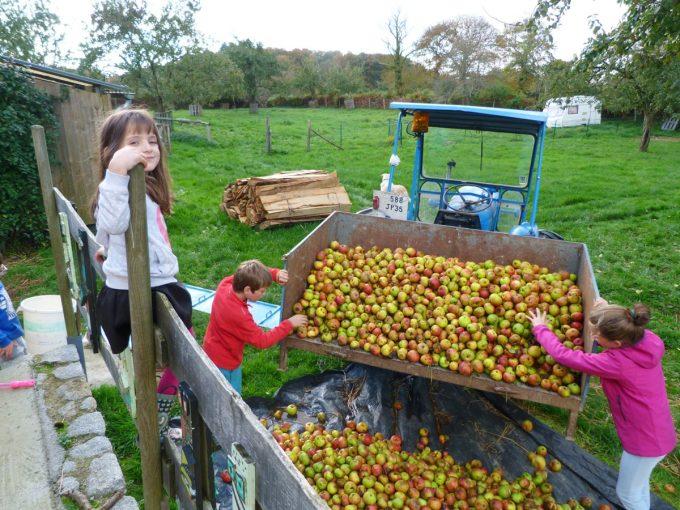 Entre Pomme et Sureau