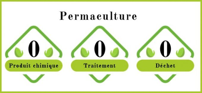 Ferme Douar Mager - permaculture