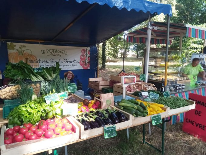 Etal de légumes bio