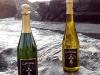 Vignobles Lusseaud - Muscadets et pétillants