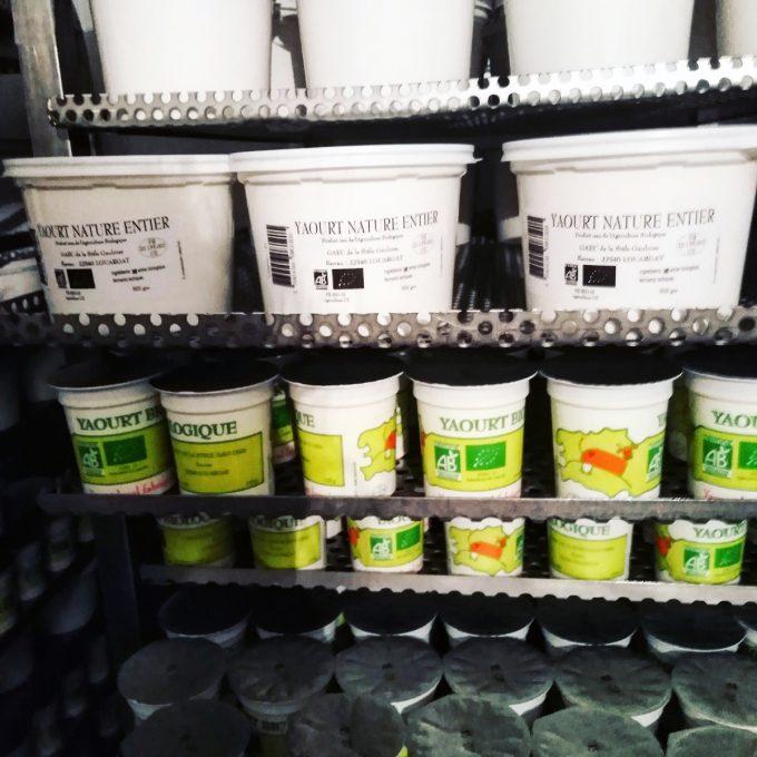 Gaec de la Stèle Gauloise - produits laitiers