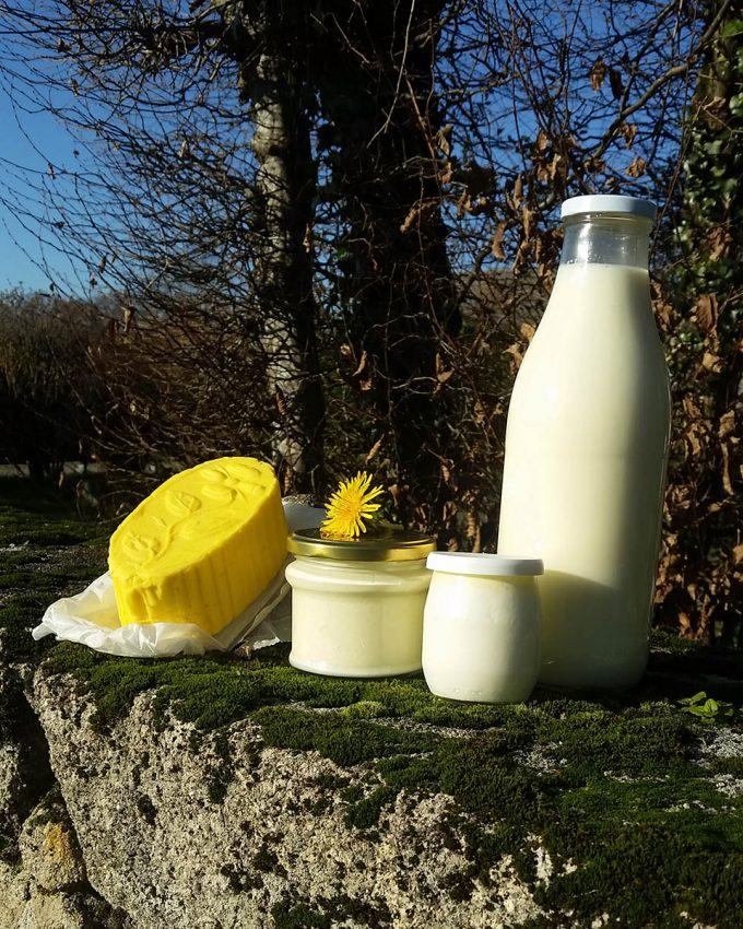Les produits laitiers de la ferme