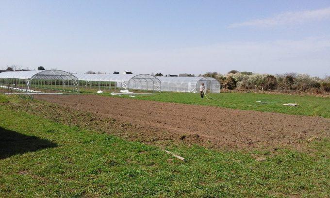 Graines de Saint Germain - 1,5 hectare