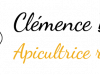 Logo d'Abeille Nomade