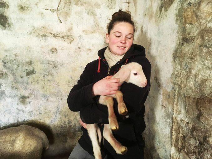 Adeline et un agneau