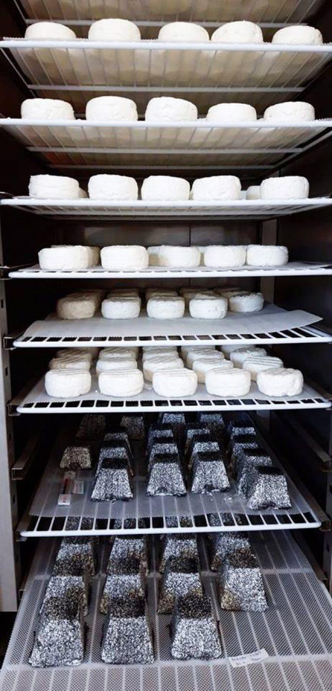 On fait vieillir le fromage de chèvre