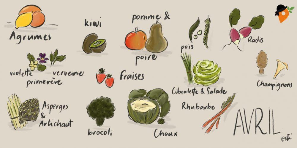 Avril – Liste des fruits et légumes de saison