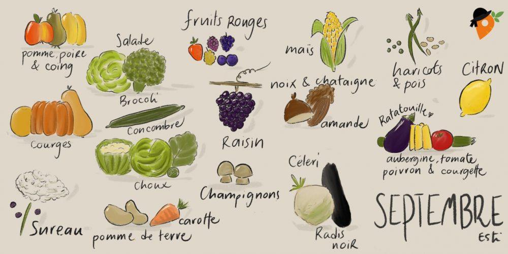 Septembre – Liste des fruits et légumes de saison