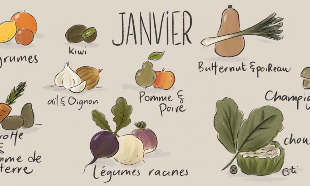 Janvier – Liste des fruits et légumes de saison