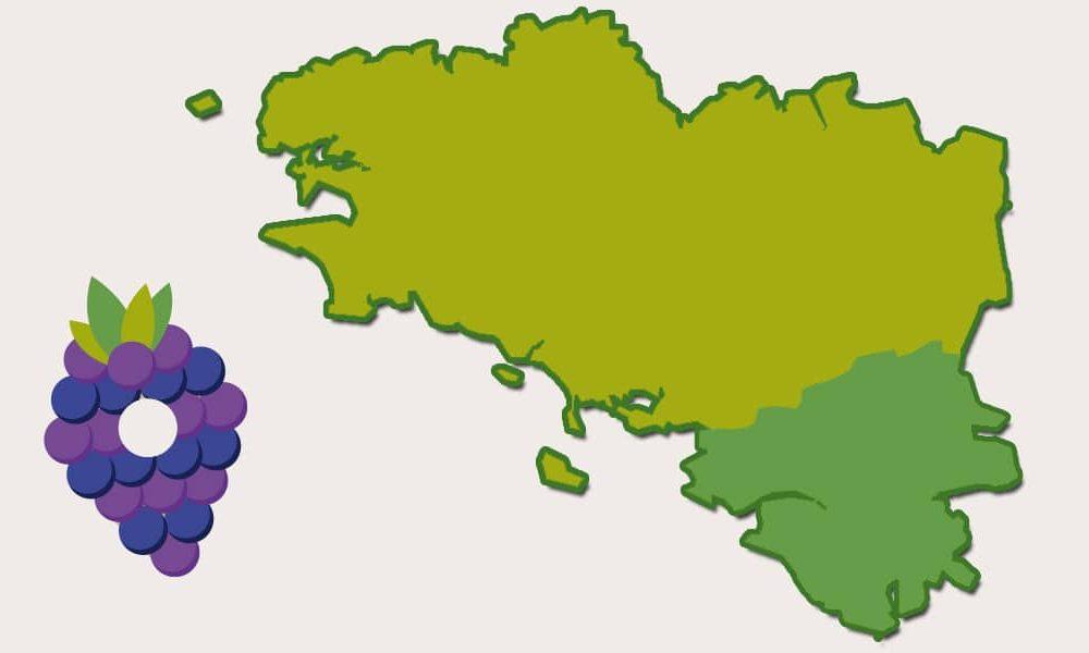 Pays Nantais, historiquement en Bretagne ! ⬛⬜⬛
