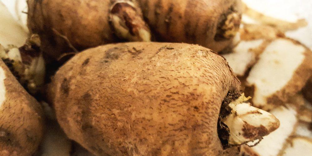 Le cerfeuil tubéreux : une saveur entre châtaigne et pomme de terre…