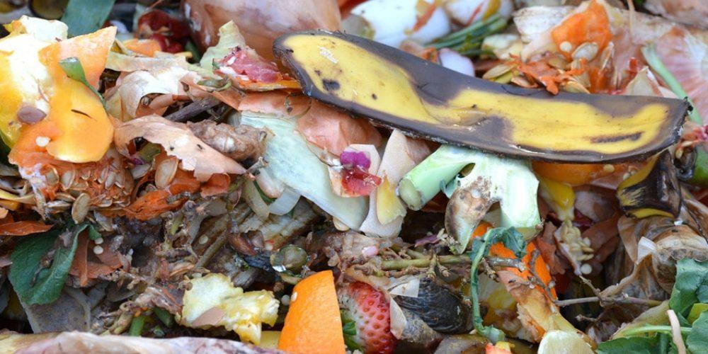 Compostage : quels sont les déchets compostables?