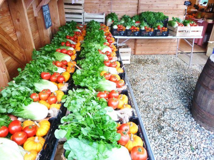Vente de légumes en panier ou détails