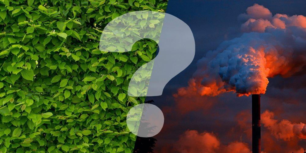 De quoi est composée ton empreinte écologique 👣 et comment faire pour la réduire ?