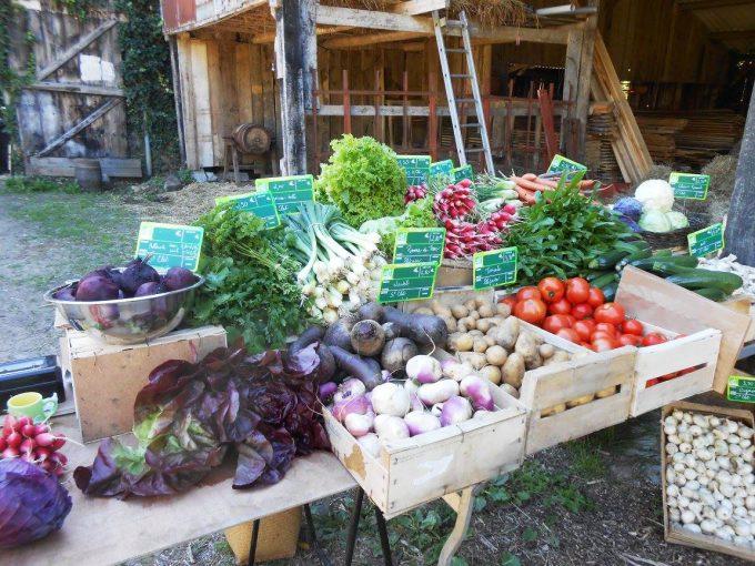 Les paniers de fruits et légumes