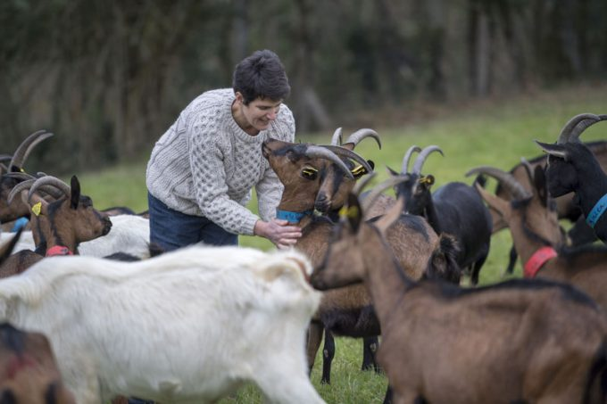 L'éleveuse et ses chèvres