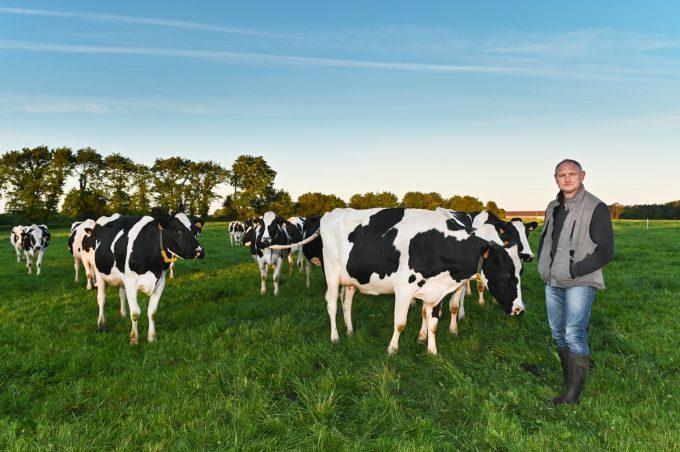 Yann et les vaches, productrices du bon lait !