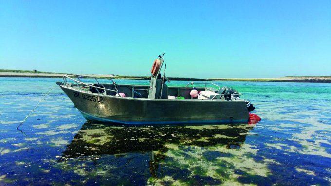 Globe Xplore - récolte en mer