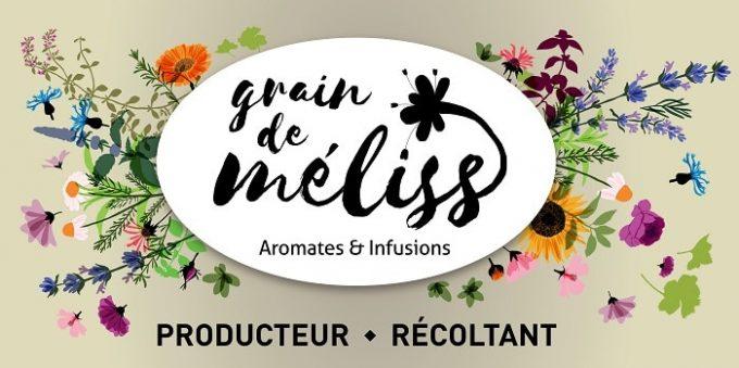 Grain de Méliss - logo