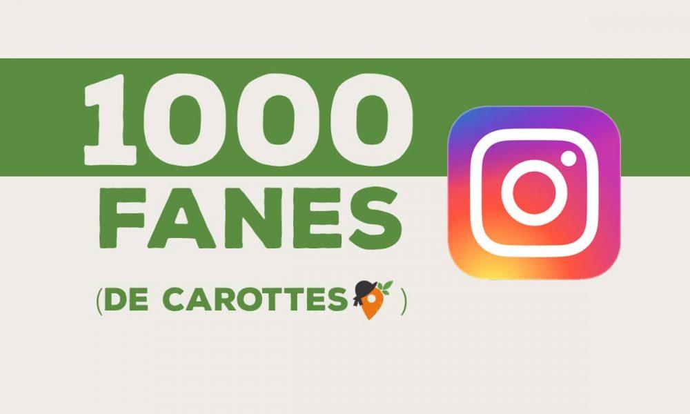 1000 Fanes (de carotte) sur Insta !