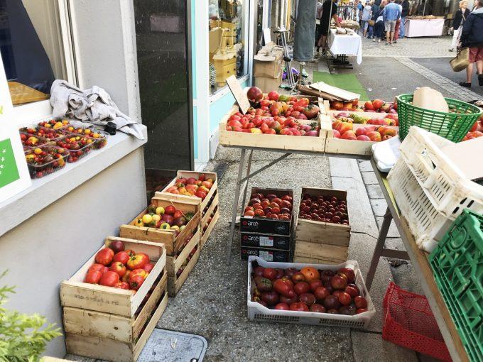 Tomates à gogo