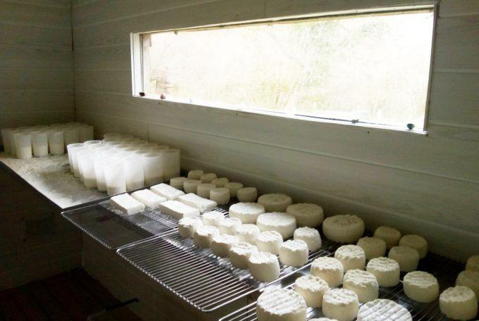 La Ferme de Trofalher - séchage de fromages de chèvre