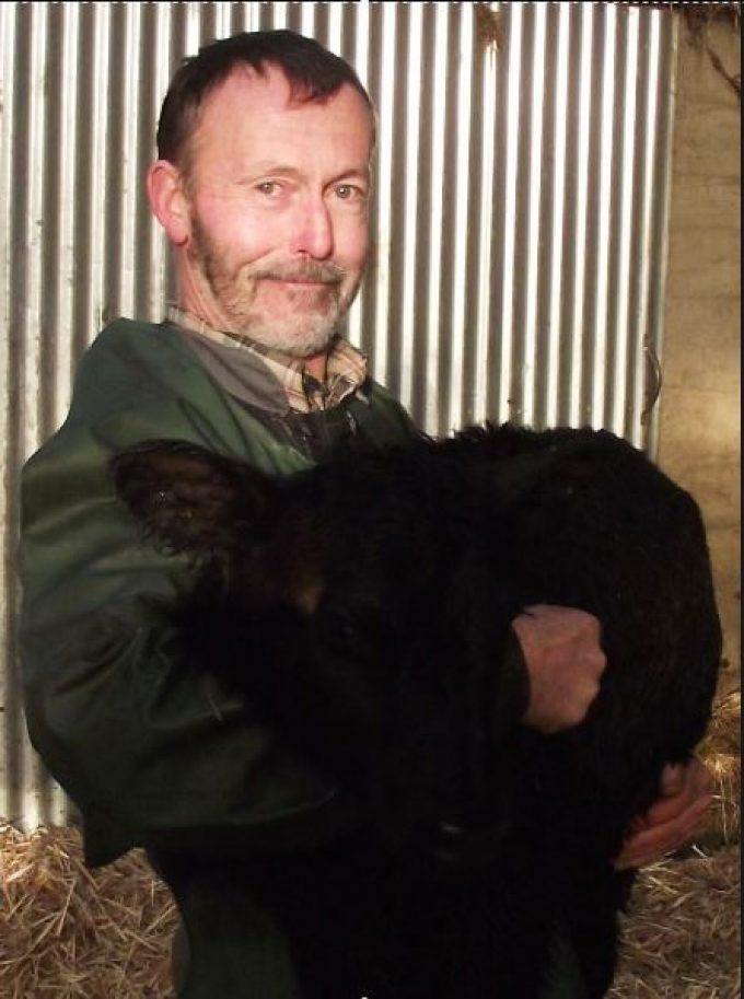 Jean-Yves et la naissance d'un petit veau