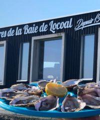 Les huîtres de la Baie de Locoal