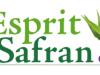 Logo Esprit Safran