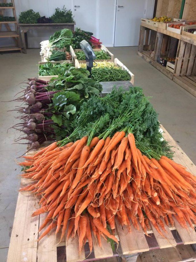Vente de légumes au magasin