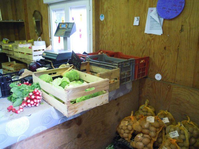 Paniers de légumes, livraison possible