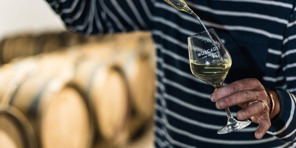 Muscadet : Un vin breton qui se réinvente !
