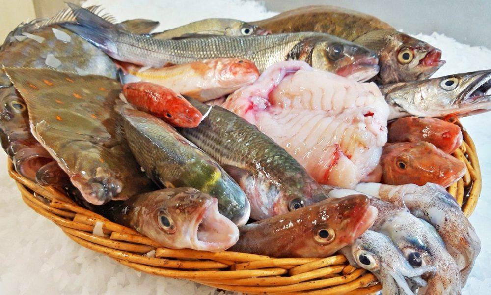 Livraison de poissons locaux et de saison à domicile : Le Panier à Poissons