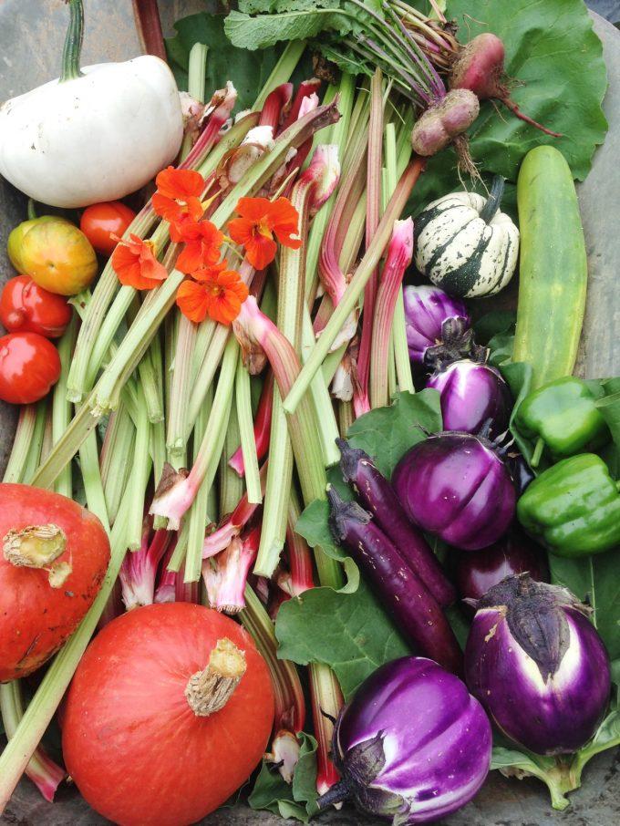La P'tite Ferme - légumes