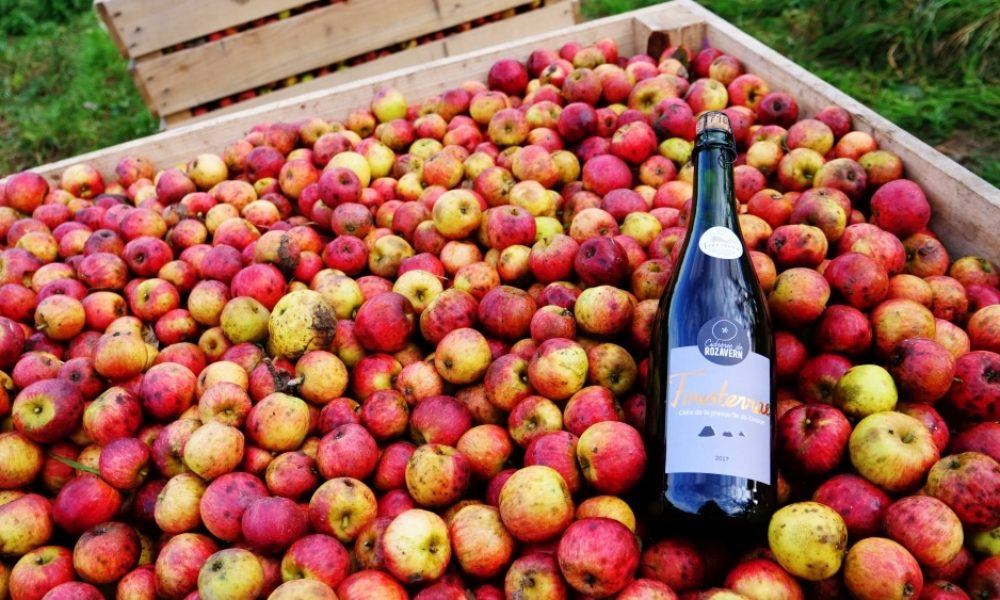 Cidre doux ou Brut ? Demi-sec ou traditionnel ? On vous guide !