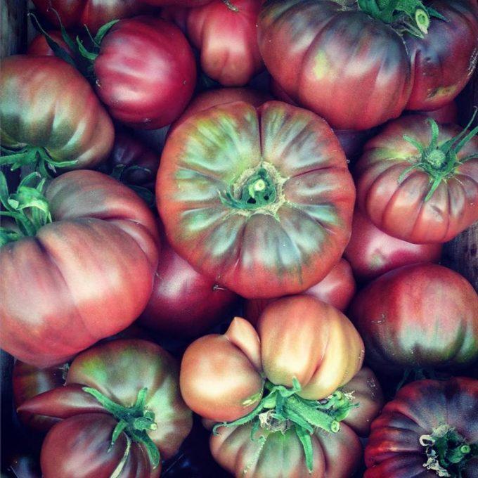 Tomates Noires de Crimée