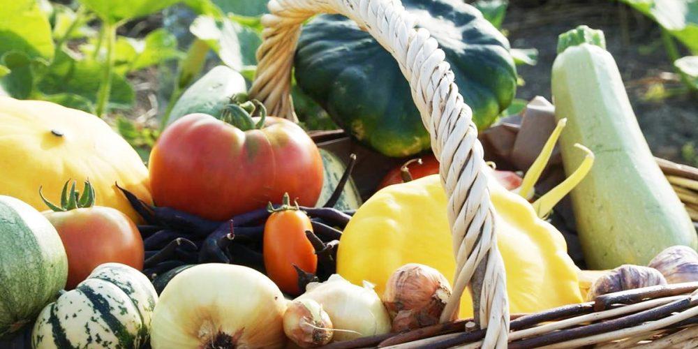 Faire des économies sur vos courses en mangeant local [ASTUCES]