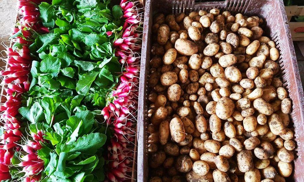 Comment faire pour manger local et responsable ?