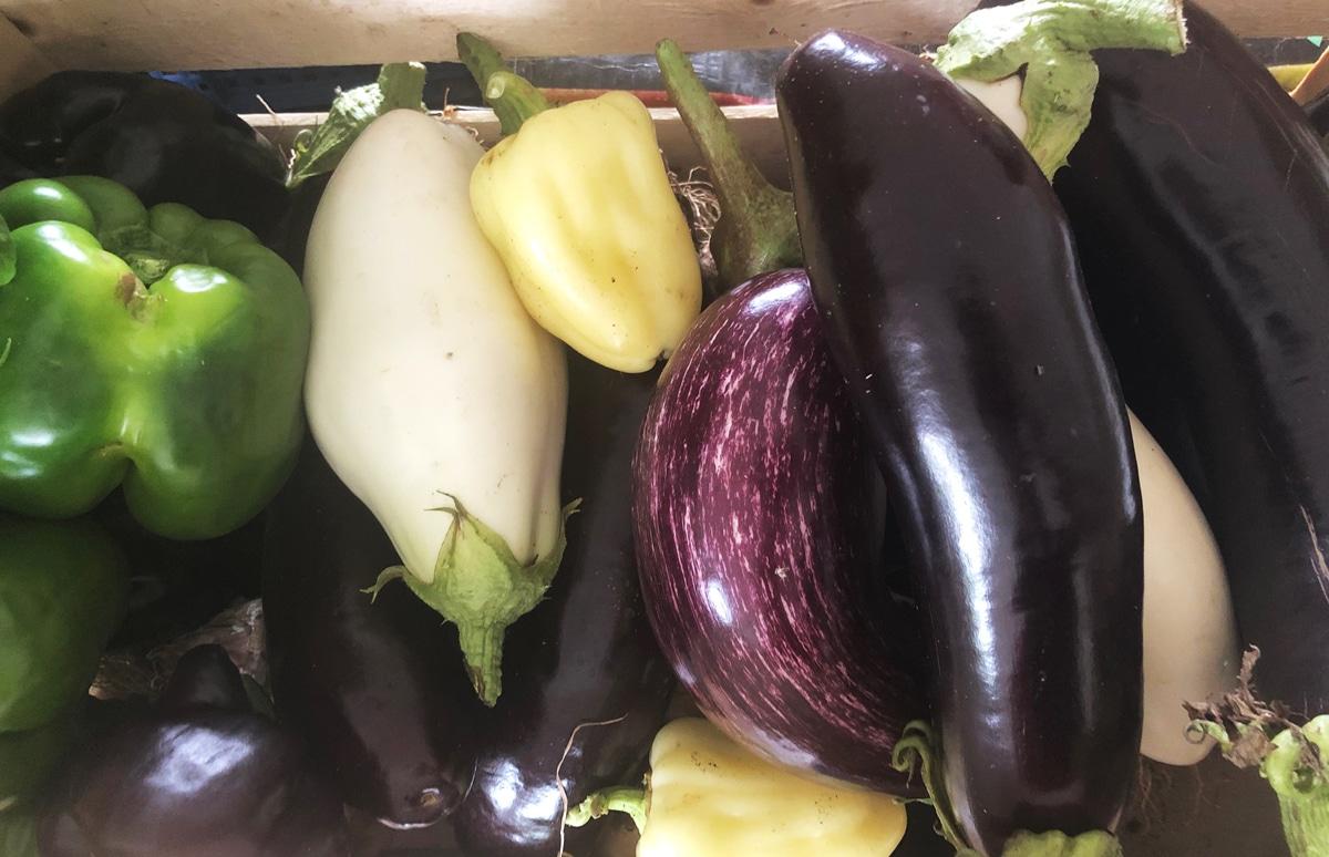Cagettes de légumes de saison : On a comparé les prix pour vous !