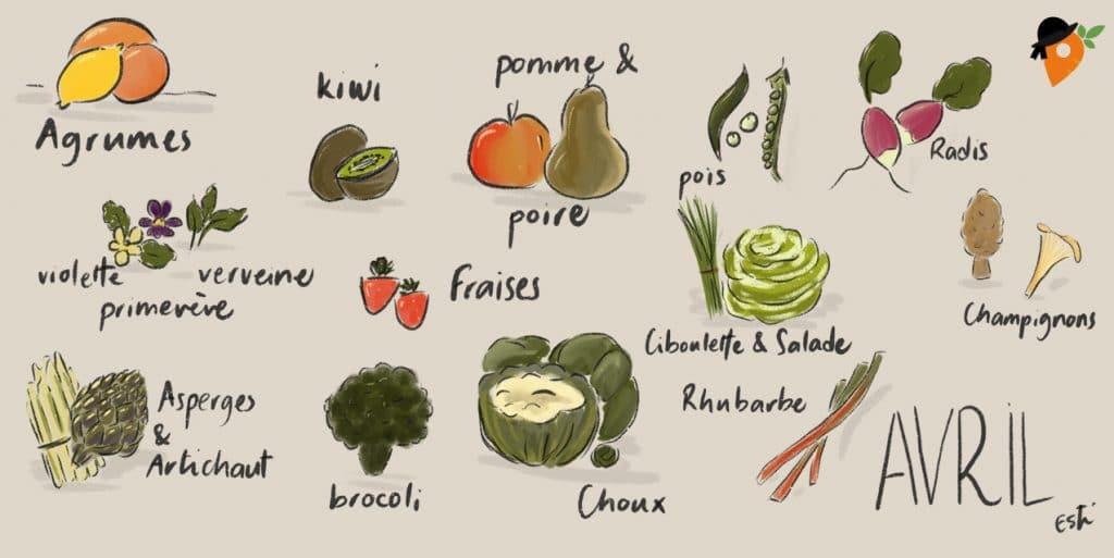 Avril - Liste des fruits et légumes de saison