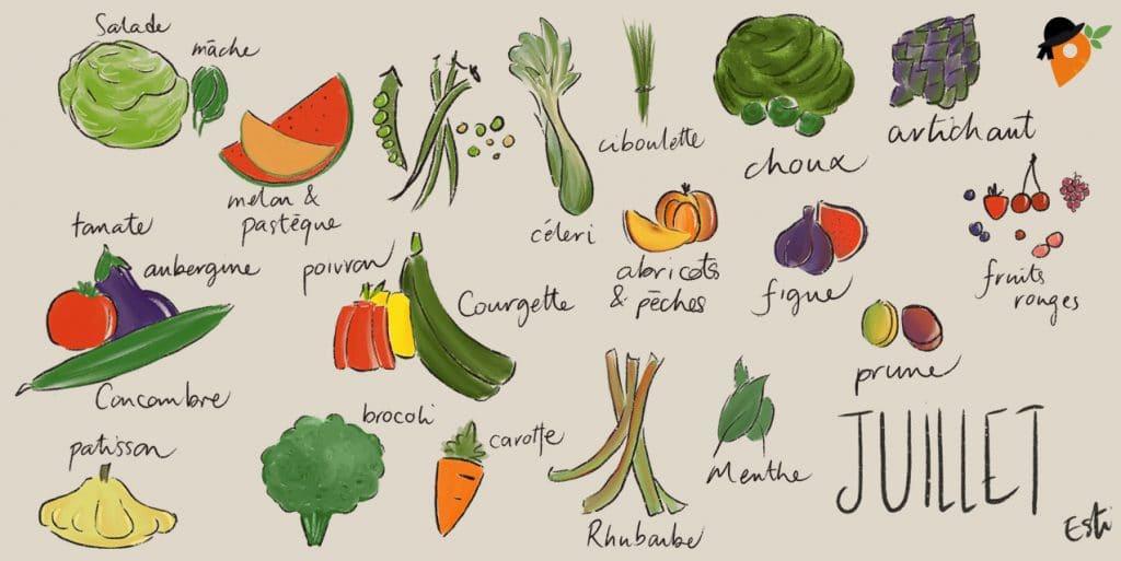 Juillet - Liste des fruits et légumes de saison