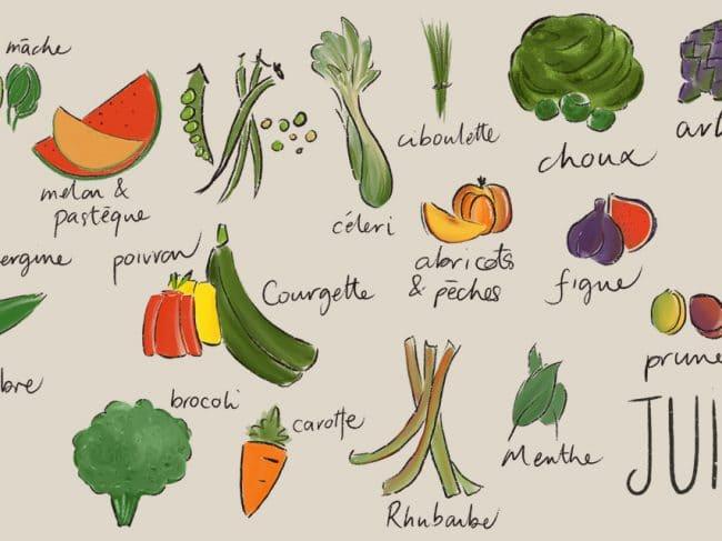 Juillet – Liste des fruits et légumes de saison