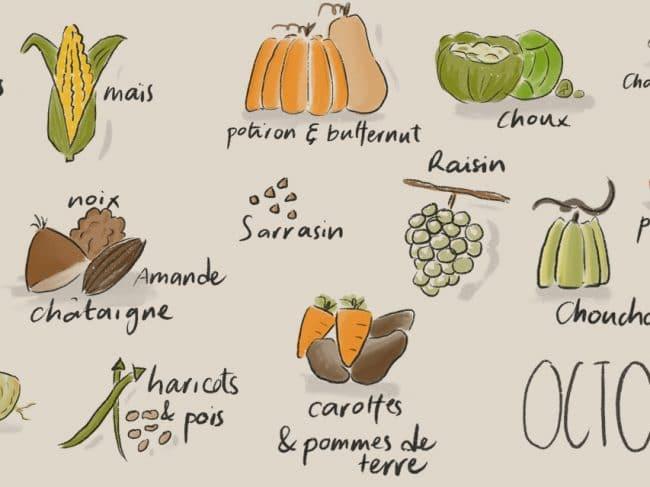 Octobre – Liste des fruits et légumes de saison