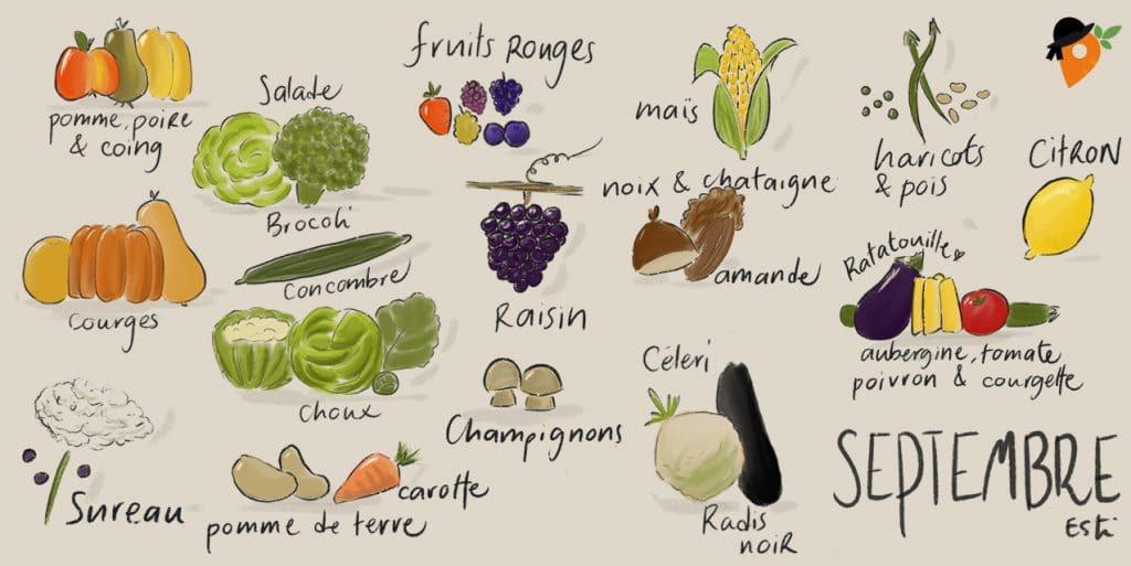 Septembre - Liste des fruits et légumes de saison